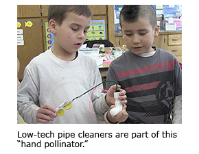 """Low-tech pipe cleaners are part of this """"hand pollinator."""""""