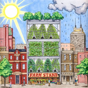 Engineering Everywhere_Vertical Farms