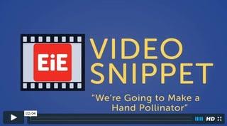 2016.01.12__Video_Snippet_Make_a_Hand_Pollinator.jpg