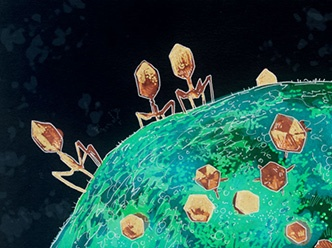 outbreak bacteriophages image