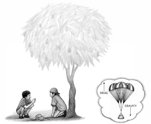 Paulos Parachute 2