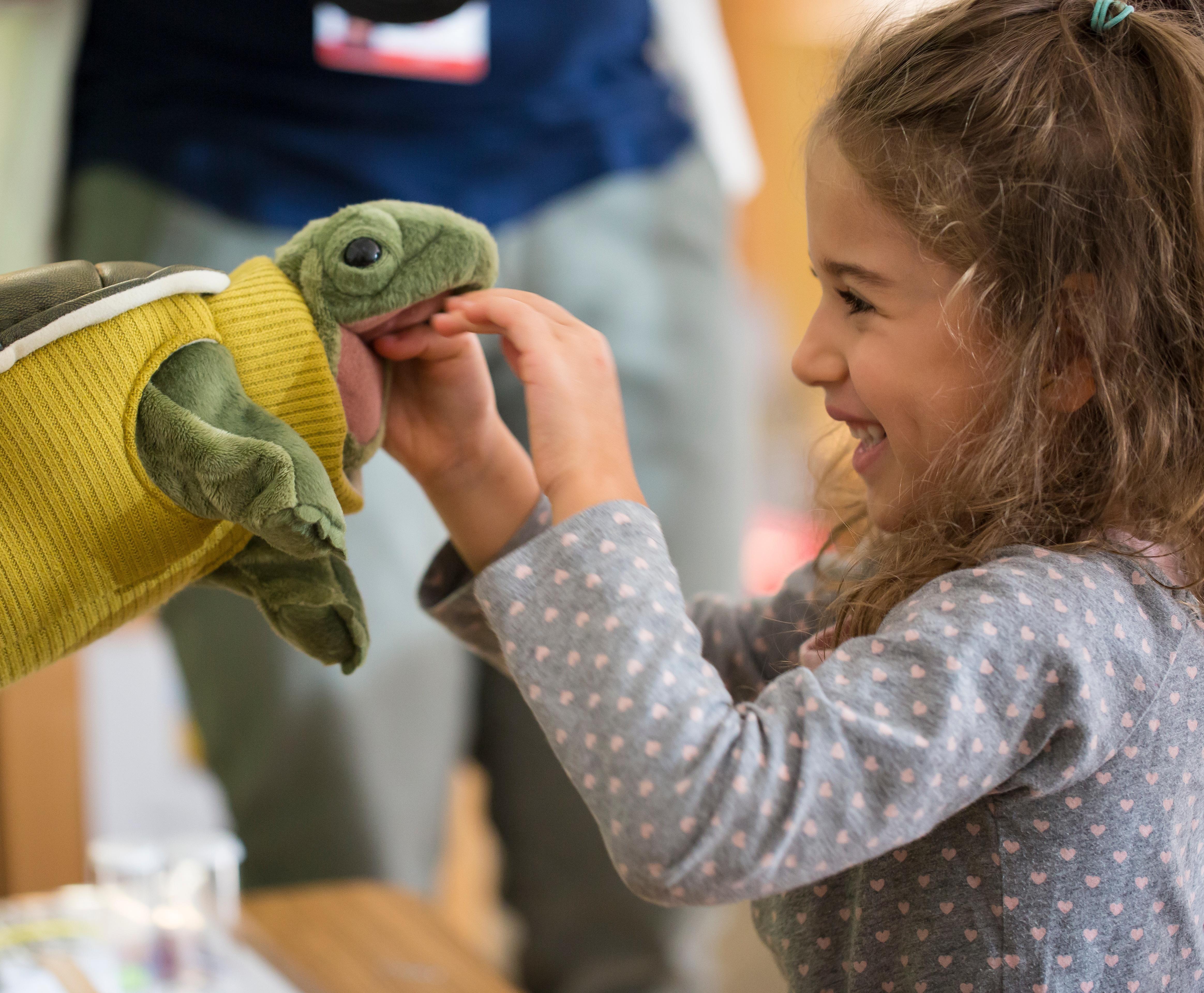pilot_preschool_turtle_puppet.jpg